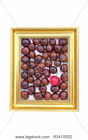 Conker Fruits And Red Apple In In Golden Retro Frame Isolated On White