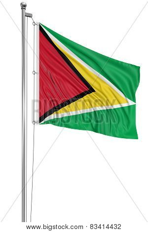 3D Guyana flag