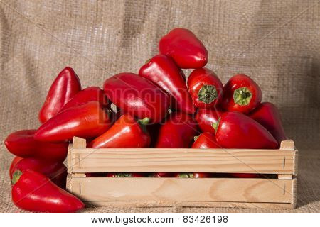 Fresh Red Sweet Peppers