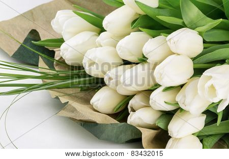 Fresh Cut Tulip Flowers With Greens