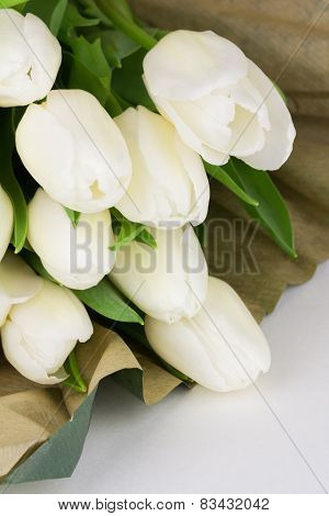 Fresh Cut White Tulips Bunch