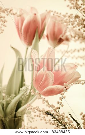 Spring Bouquet With A Mimosa And Tulips. Toning
