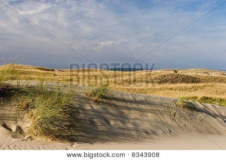 Nagliai Dune