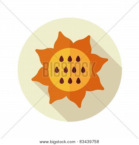 Sunflower Flat Icon With Long Shadow