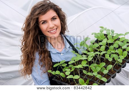 Young woman working in a greenhouse