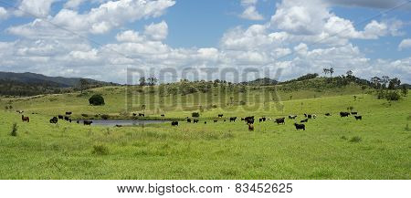 Queensland Cloudy Sky Summer Rural Scene