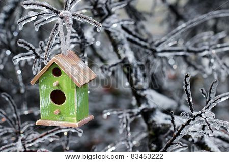 Birdhouse hanging on ice covered tree branches