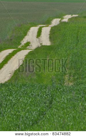 A Country Road Through Farmland. Sandy Hills On The Way. Country Landscape.