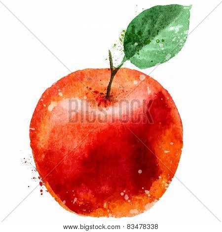 apple logo design template. fruit or food icon.