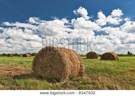 Hay Harvesting Is Done