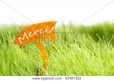 Label With French Merci Which Means Thank You On Green Grass