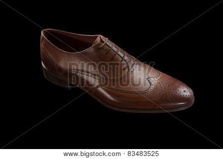 Brown Classic Male Shoe