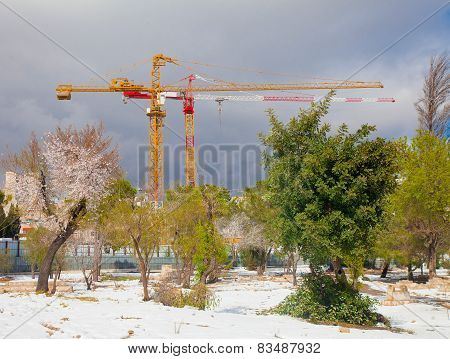 Construction Cranes In Early Spring