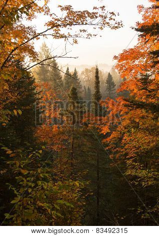 Northwoods Autumn Dawn