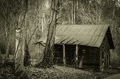 pic of appalachian  - Shack abandoned in the forest along an Appalachian Mountain back road - JPG
