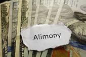 image of divorce-papers  - Closeup of Alimony paper note on cash - JPG