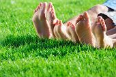 image of relaxing  - Family with small children relaxing on the grass - JPG