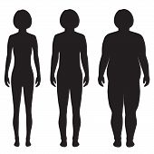 pic of body fat  - vector fat body - JPG
