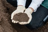 stock photo of loam  - Close - JPG