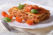 image of lasagna  - Delicious hot lasagna with basil and tomatoes on a white plate - JPG