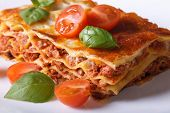 stock photo of lasagna  - Portion of Italian lasagna with fresh basil and tomatoes on a white plate - JPG