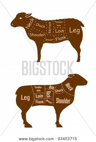 Lamb or mutton butcher cuts detailed diagram
