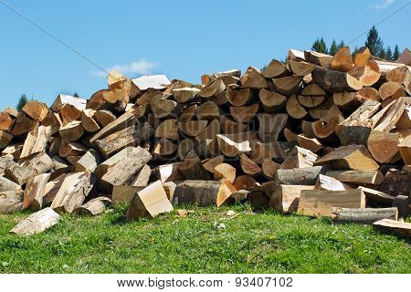 Sectional Drawing Stack Of Firewood On The Grass