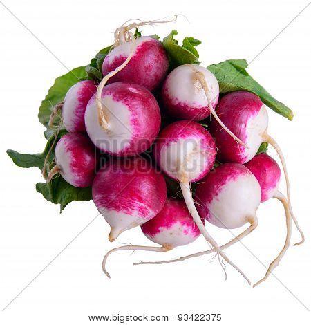 Vegetables Radish Isolated