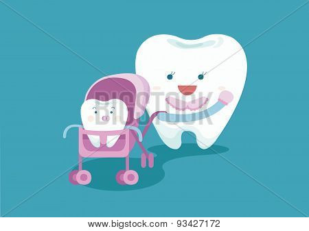 Baby tooth and mom tooth