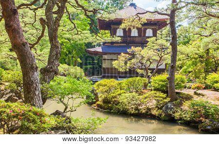 Beautiful Japanese green garden in summer season