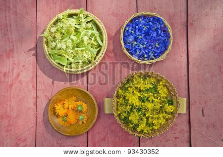 Midsummer Time Medical Herbs Flowers In Wicker Baskets
