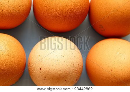 Fresh eggs close up on a white background