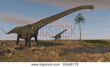 mamenchisaurus on shore