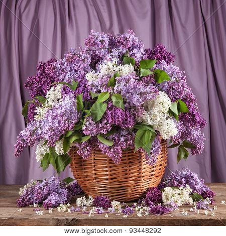 Lilacs In A Basket On A Purple Background