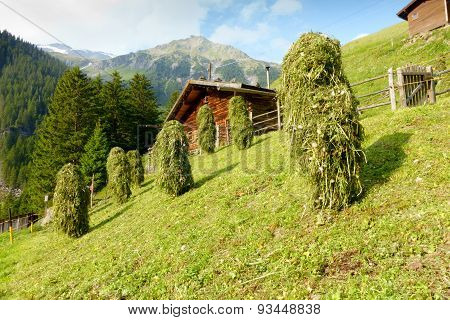 Haystacks in front of a rustic old hut