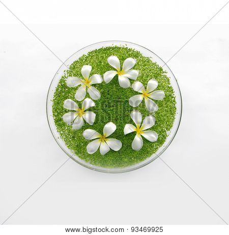 bowl of with white frangipani with green small leaves in water