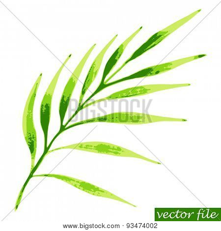 Green tropical branch. Watercolor vector illustration.