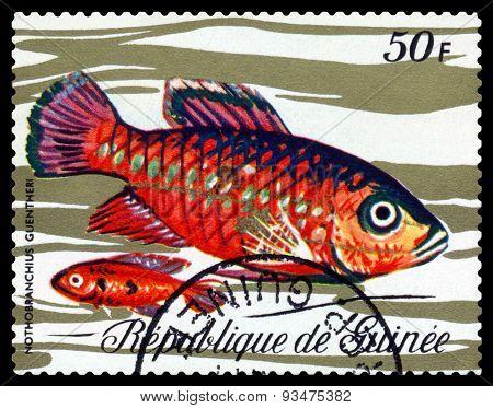Vintage  Postage Stamp. Fish Nothobranchius Guentheri.