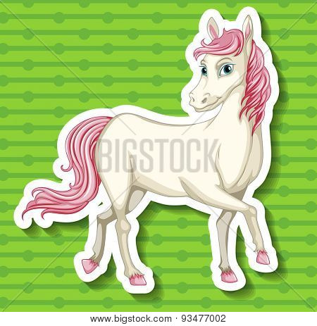 Close up white horse with pink tail