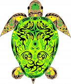 picture of green turtle  - Sea turtle of  turtle with drawing - JPG