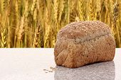 picture of whole-wheat  - whole wheat bread with barley field background - JPG