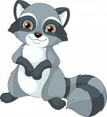 stock photo of raccoon  - Image cute raccoon on a white background - JPG