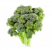 image of gai  - Broccoli close up on a white background - JPG