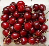 picture of grub  - Close up of fresh ripe cherry berries - JPG