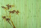 picture of bamboo leaves  - bamboo Background great for any project - JPG
