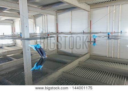 Bunch of various electric cables are coming out from wet floor wrapped in plastic foil.