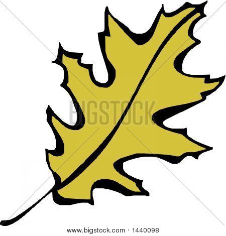 Dead Leaf.Eps