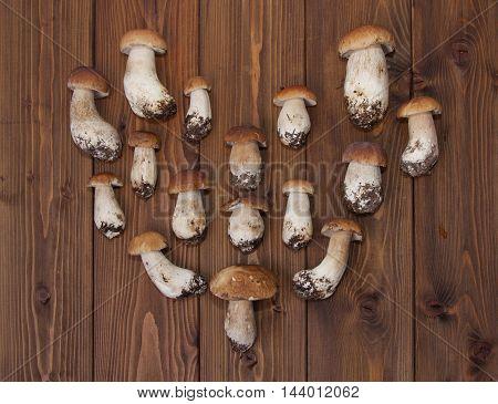 boletus mushrooms put in shape of heart