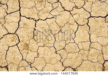 Brown dry land for background or texture