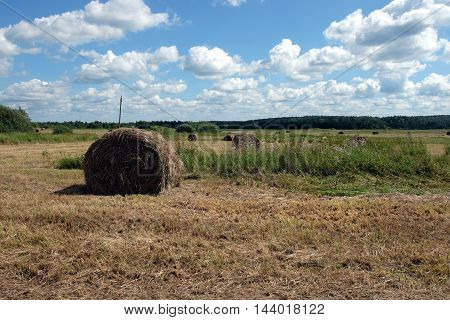 Beautiful rustic landscape with hay rolls on cultivate field under blue sky with white clouds in hot summer day horizontal view